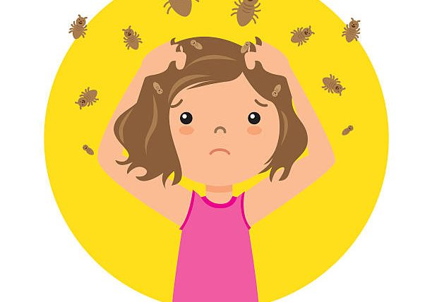 School Year Lice Prevention